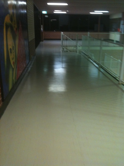 Vinyl cleaning sealing adelaide for Can you seal vinyl flooring