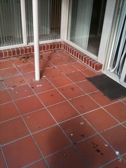 Terracotta Tiles Sydney Melbourne Brisbane Perth